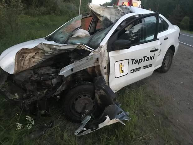В Удмуртии водитель такси погиб в аварии с лосем