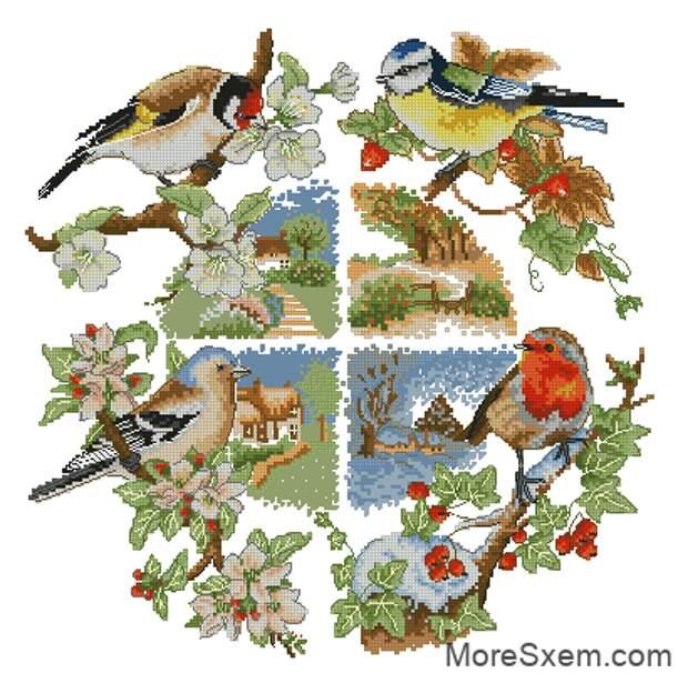 Птицы и сезоны