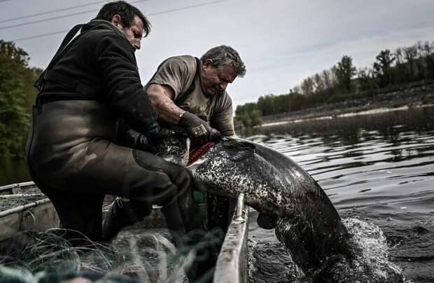 Фото дня: когда рыбалка удалась