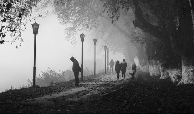 Крымчанам запретили посещать парки Фороса и Мелласа