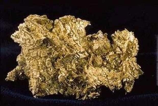 Золотая лихорадка. Покупать ли золото в 2021 году?