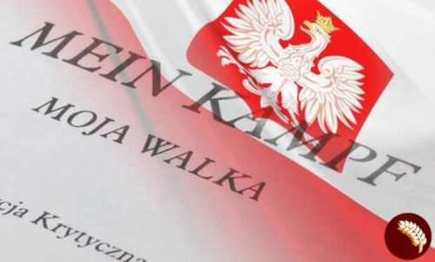 Польская поддержка неонацизма