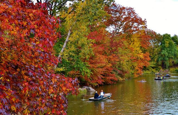 Осень. (gigi_nyc)