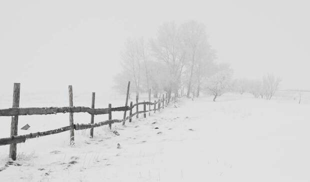 Мощный снегопад предсказали жителям Карелии