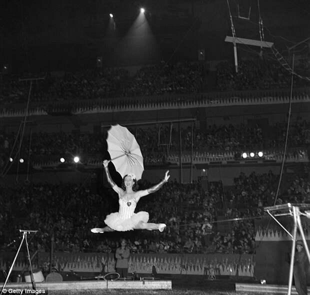 Фелды планируют показать еще 30 представлений в разных штатах  закрытие, сша, цирк