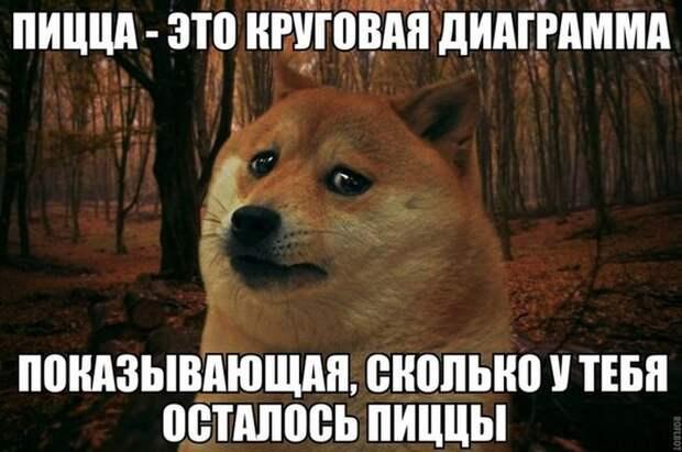 1419015947_podborka-45