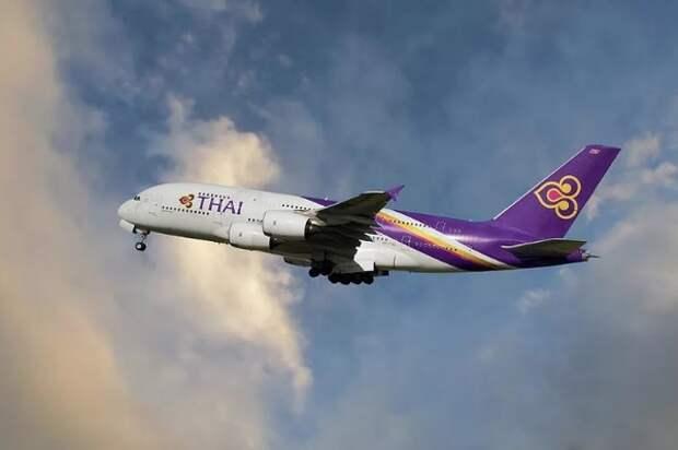 В Домодедово экстренно сел летевший в Таиланд самолет