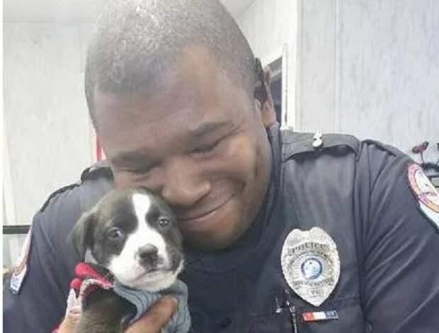 Ночной вызов помог полицейскому стать обладателем маленького, замерзающего щенка