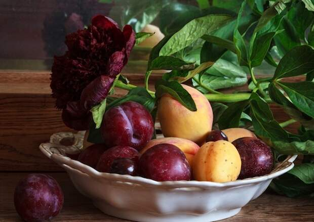 Персики, сливы, абрикос из косточки: от дички до нового сорта