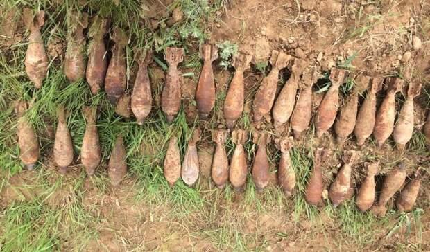 Нашли 300 снарядов: в Волгоградской области полигон «Прудбой» очистили перед учениями
