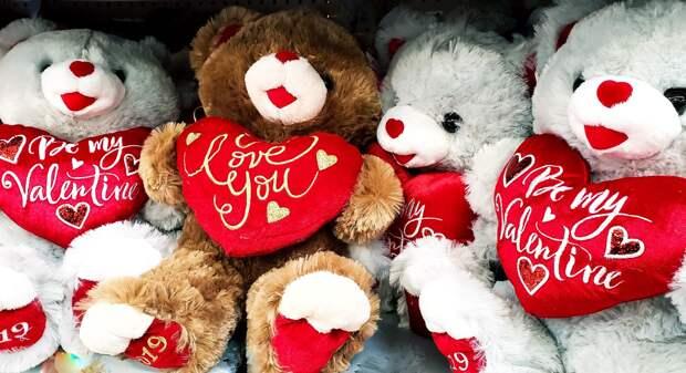 Подросток в Ижевске украл двух плюшевых медведей и подарил их знакомым девушкам