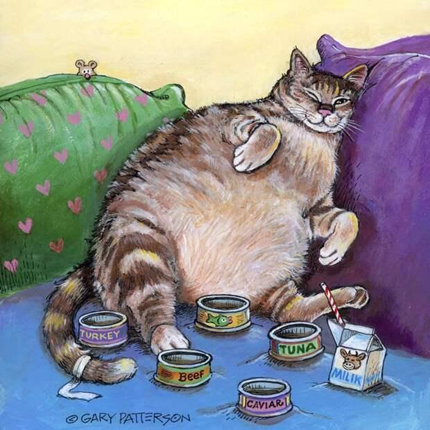 Рассказ кота Бублика о его жизни