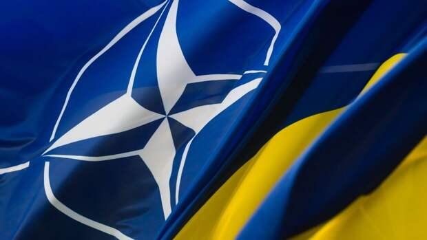 Госдеп США посоветовал Украине не торопиться с членством в НАТО