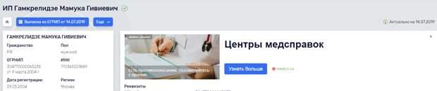 Грузинские олигархи финансируют русофобов, зарабатывая в России