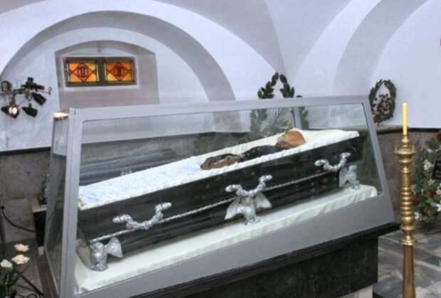 Загадка мумии хирурга Пирогова, или Жизнь после смерти