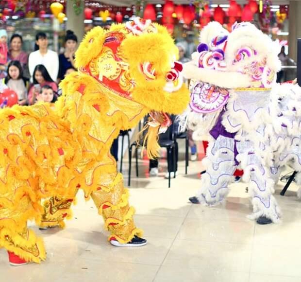 В центре на Ярославке пройдет популярный вьетнамский праздник