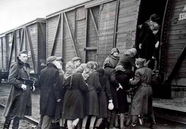 Правда о законе об обязательной эвакуации