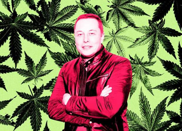 Илон Маск и марихуана