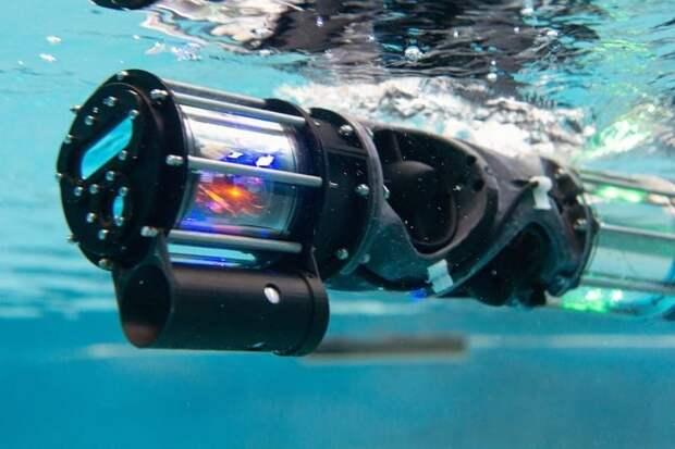 Робот-змея может помочь инспектировать подводные объекты