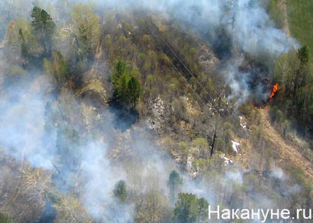 В Свердловской области потушен лесной пожар, с которым боролись несколько суток