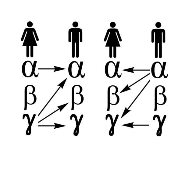 Схемы привлекательности, которые работают: теория альфа-самок