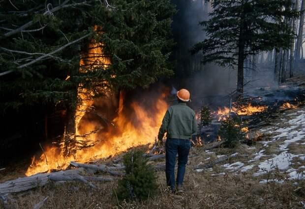 29 человек пострадали из-за природных пожаров в Забайкалье