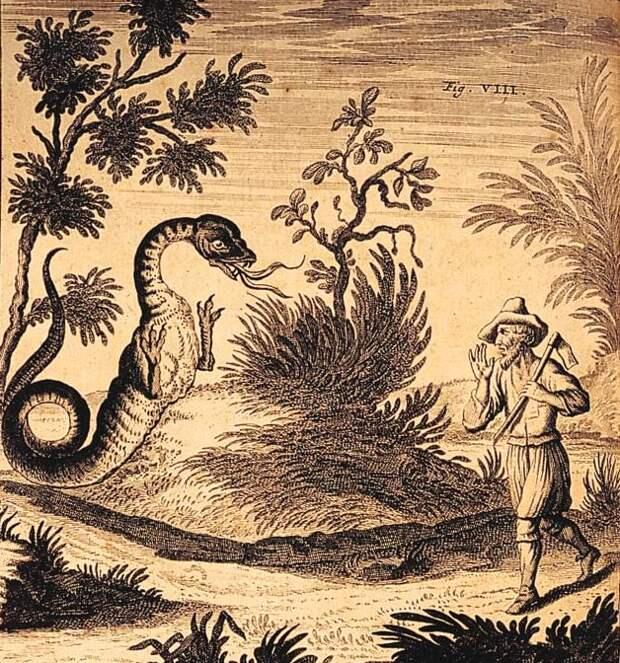 Альпийский монстр Татцельвурм - выдумка или реальное животное?