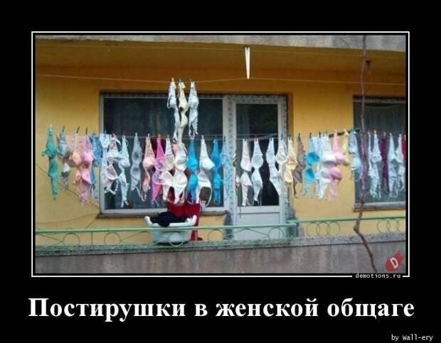Постирушки в женской общаге демотиватор, демотиваторы, жизненно, картинки, подборка, прикол, смех, юмор