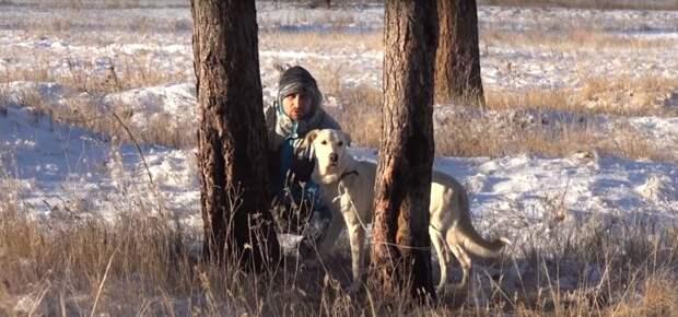 """""""Подойти к нему было непросто!"""" В Казахстане люди спасли белого пса, привязанного на 20-градусном морозе…"""