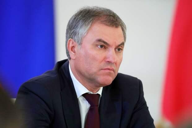 Володин предложил обсудить ограничения анонимности в интернете