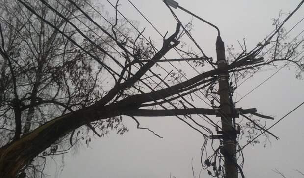 Более 50 тысяч жителей Нижегородской области остались без света