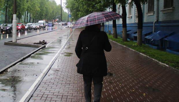 Около 20% от месячной нормы осадков выпало в Московском регионе за прошедший день