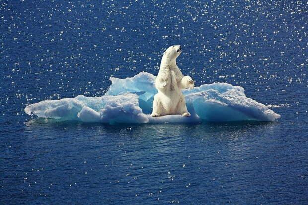 Байден и ЕС определили общую цель климатического саммита