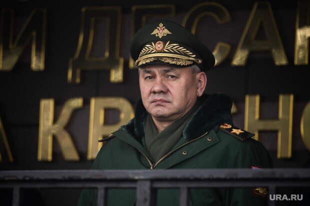 Картины искульптуры Шойгу продали нааукционе за40 млн рублей