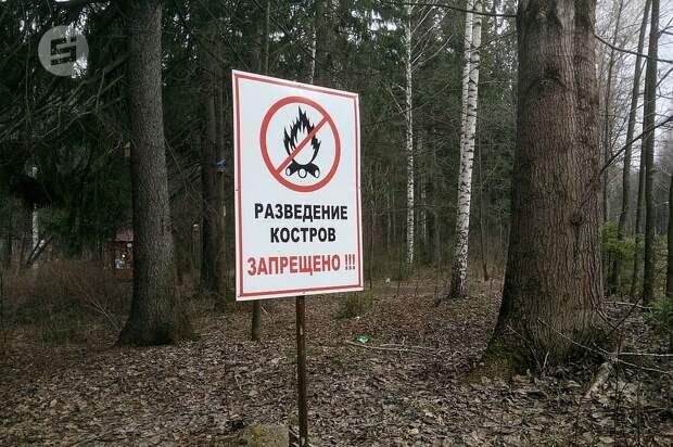 Пожароопасный сезон начнется в лесах Удмуртии с 20 апреля