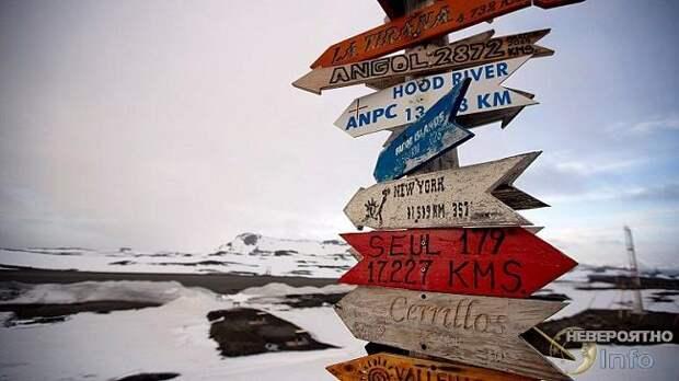 Пал последний бастион: коронавирус добрался до Антарктики