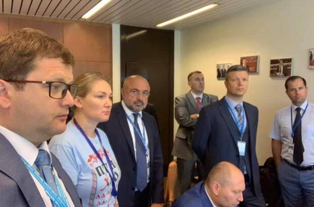 Участники украинской делегации в ПАСЕ покаялись перед российскими коллегами