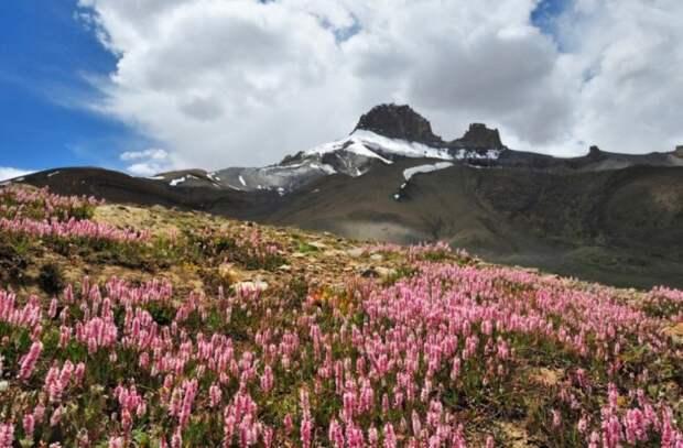 15 мест на Земле, где правит цвет
