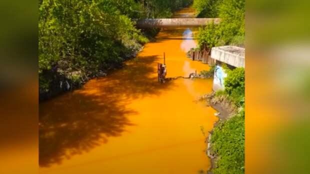 Экологическое состояние Днепра вынудило крымчан забить тревогу