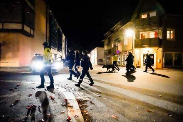 В Норвегии датчанин с луком и стрелами напал на прохожих и убил 5 человек