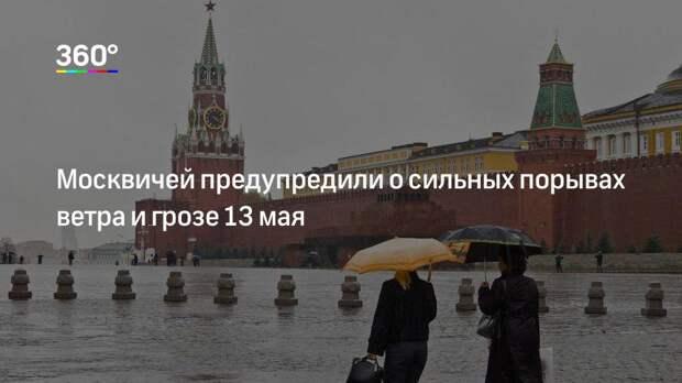 Москвичей предупредили о сильных порывах ветра и грозе 13 мая
