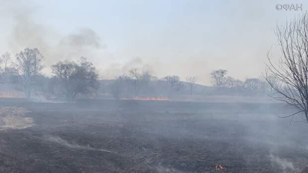Шашлыки жарить можно: особый противопожарный режим отменен на большей части Приморья