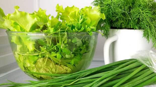 Правильно хранить свежую зелень дома помогут простые хитрости