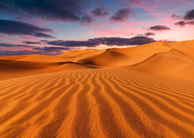 Пустыня сахара может снова стать зеленой, но не скоро.