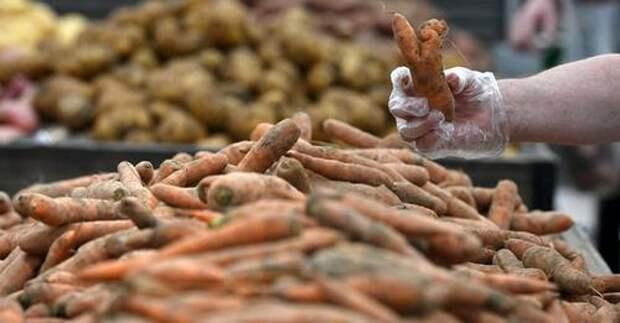 Гордеев предложил оптимизировать издержки при доставке овощей