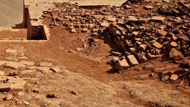 Находка археологов доказала, что древние евреи ели свинину