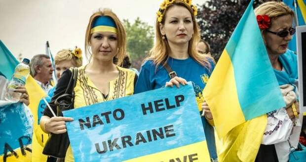 ВКиеве признали, что НАТО нехочет принимать Украину всвой состав