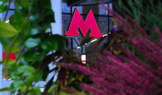 Настанции метро «Нижегородская» вМоскве появился живой сад