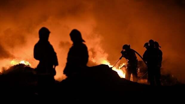 Пожар на химзаводе в Индии унес жизни 14 человек