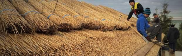 Соломенная крыша: виды и особенности укладки
